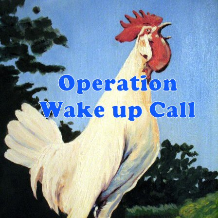 operation wake up