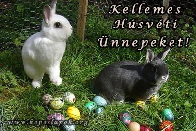 húsvéti nyuszik képeslap