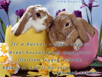 húsvéti nyuszik képeslapok