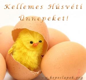 kellemes húsvétot csibe kepeslap