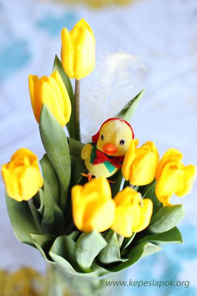 csibe virág húsvéti képeslap