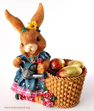 húsvéti csokinyúl képeslap