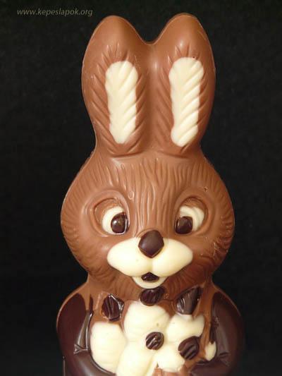 húsvéti csokinyúl képeslapok