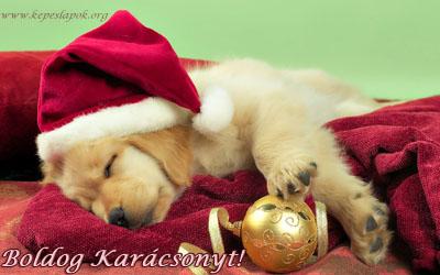 boldog karácsonyt kutyás képeslap