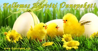 csibe húsvéti képeslap