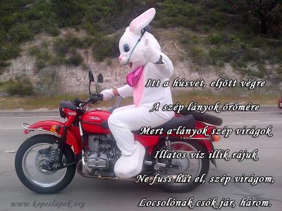 húsvéti nyúl motoron képeslap