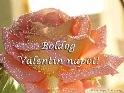 boldog valentin napot rózsa